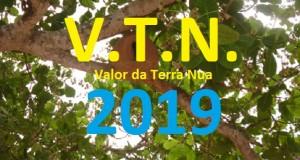 VTN 2019